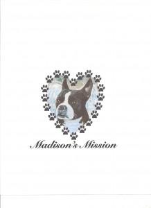 MadisonsMission2 001